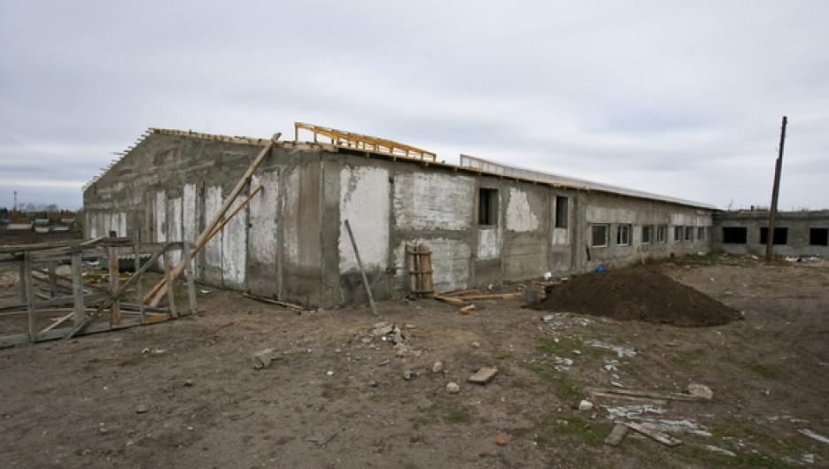 Семейная ферма на Алтае.