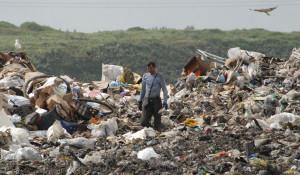Полигон бытовых отходов.