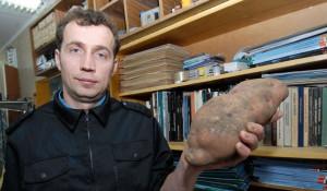 Барнаульский садовод вырастил картофель большого размера.