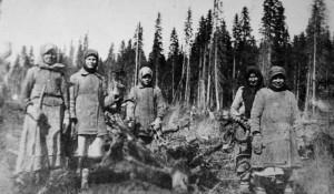 Алтайские крестьяне болезненно восприняли ограничения лесозаготовок и пошли воевать с царскими чиновниками за право рубить лес.