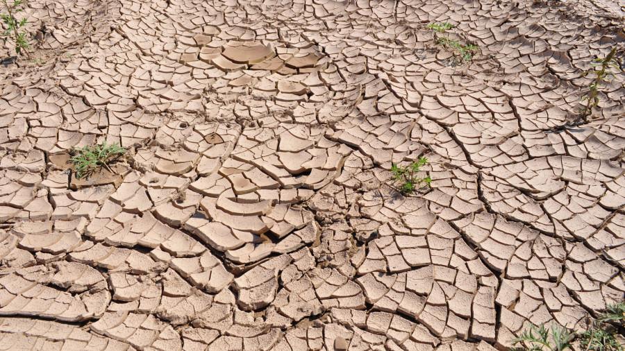 Засуха.