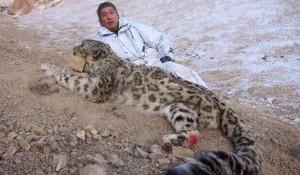 Бизнесмен Павел Тё с убитым снежным барсом.