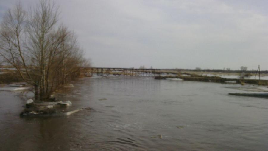 В Николаевку (Локтевский район) пришла талая вода. 13 апреля 2015 года.