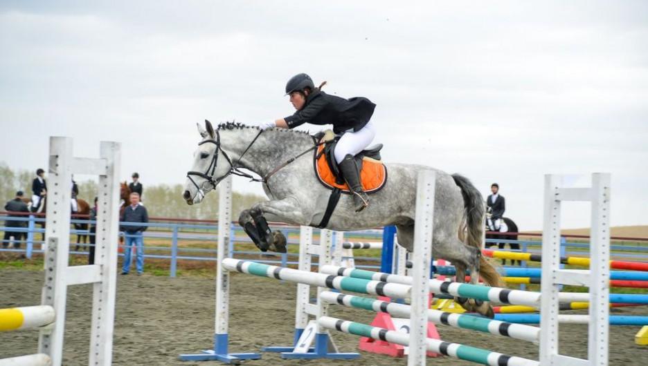 Турнир по конному троеборью в Белокурихе.