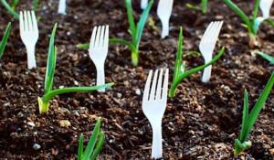 Пластиковые вилки могут уберечь сад от животных.