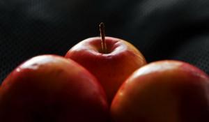 Урожай. Яблоки.