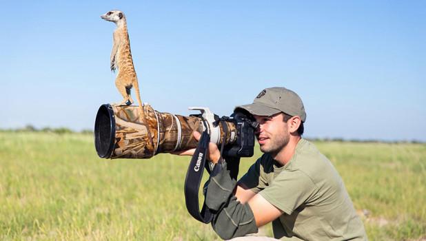 Животные и фотоаппараты.