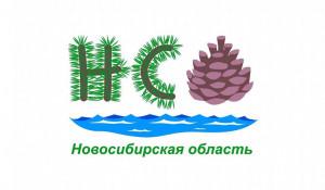 Перекресток моря и тайги! Эскиз туристического бренда Новосибирской области.