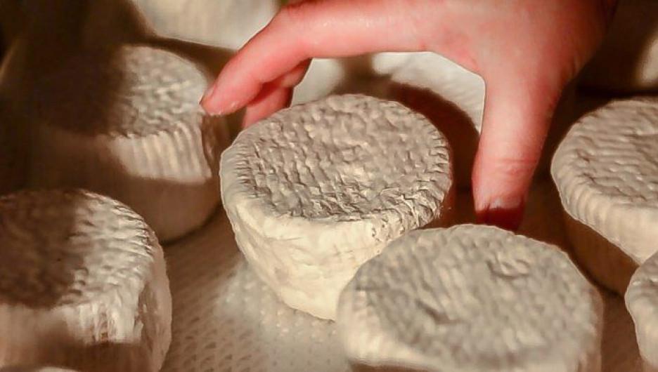 Сыры, которые производит семья Кокориных.