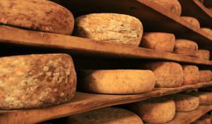 Элитный сыр.