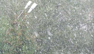 В Томске 14 сентября выпал первый снег.