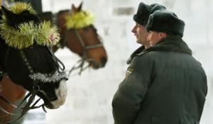 Лошади и полицейские.