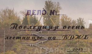 Последняя осень лестницы ВДНХ.