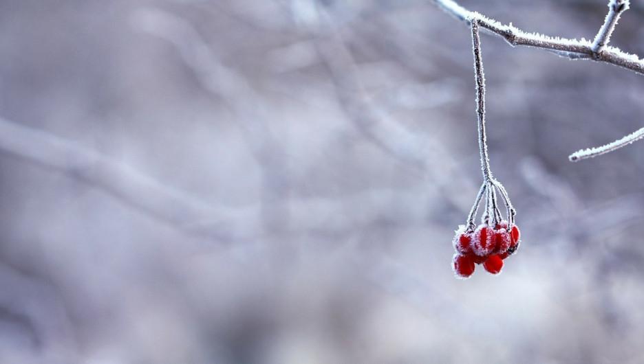 Зима, мороз, холод.