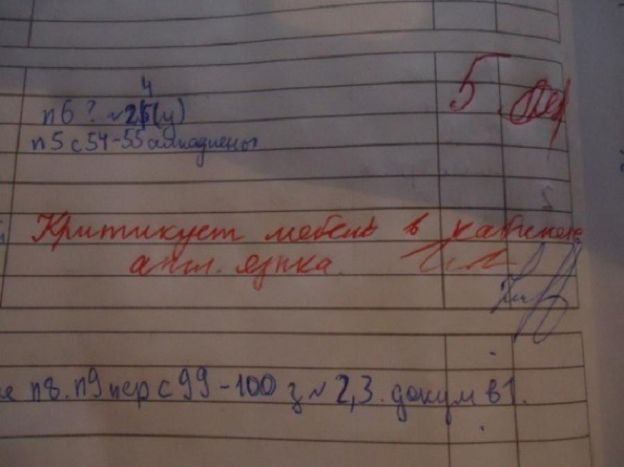 Записи от учителей в школьных дневниках.