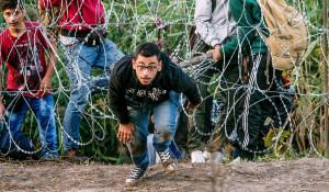 Мигранты.