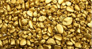 Добыча россыпного золота на Алтайском прииске.