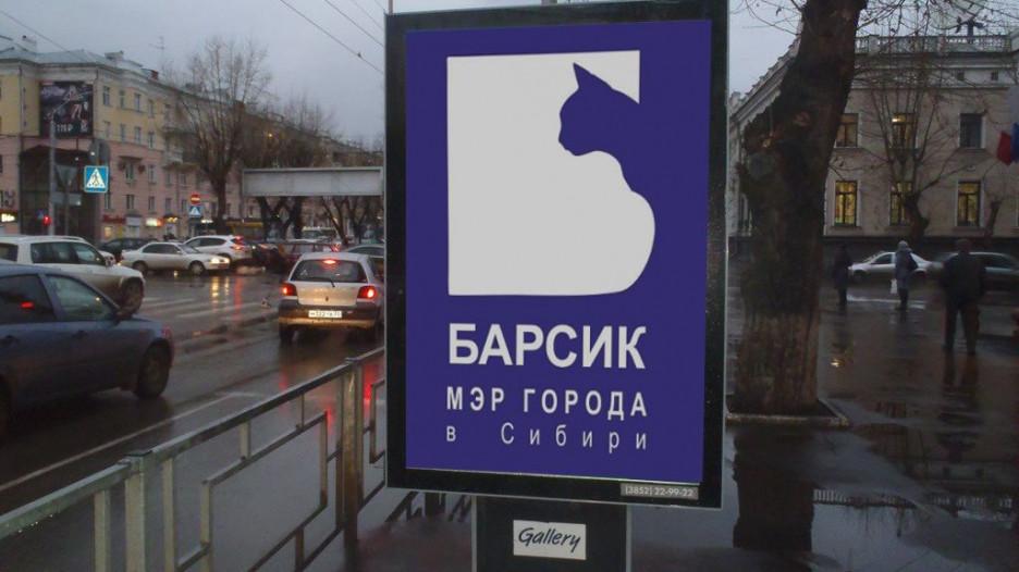 Предполагаемый агитационный плакат за кота Барсика.