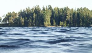Берег реки, вода.