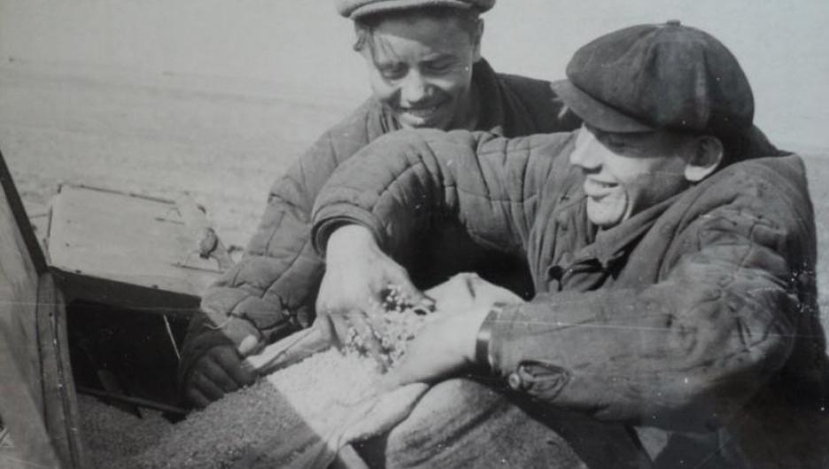 Девятиклассники засыпают семена в сеялку.