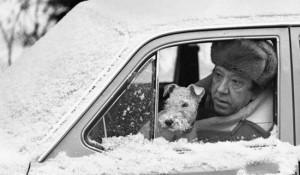 Юрий Никулин — большой любитель автомобилей и собак, 1976 год.