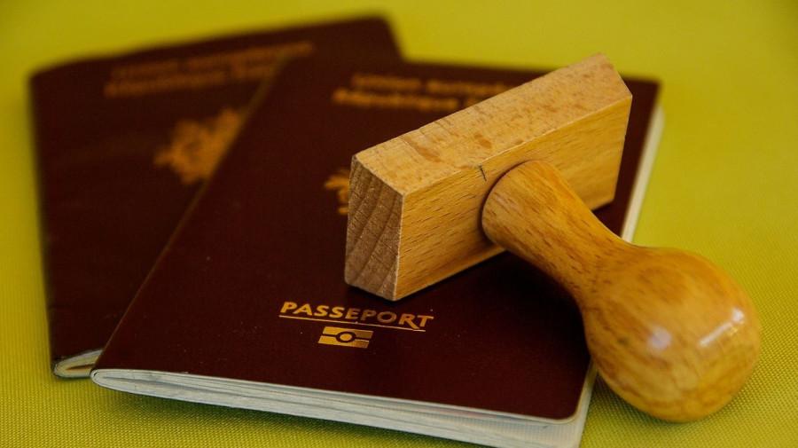 Паспорт. Визы.