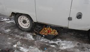 """На Алтае уничтожали польские яблоки УАЗом-""""буханской""""."""