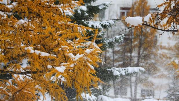 Снег осенью.