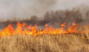 Пожар, сельхозпал.