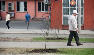 Барнаульцы.