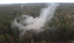 Тушение природного пожара, учения МЧС.