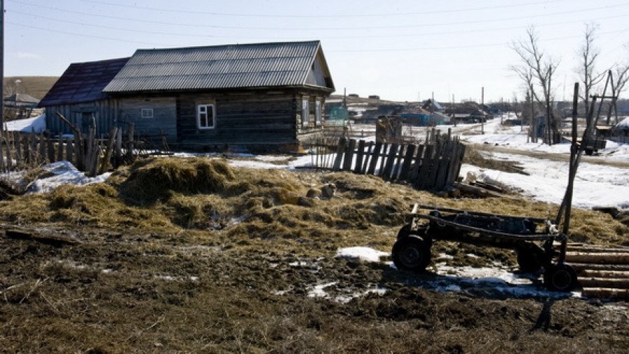 В одном из сел Алтайского края.