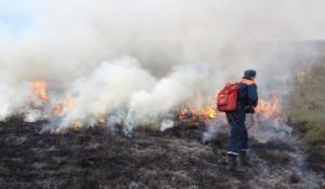 Алтайские пожарные вышли на борьбу с сельхозпалами.