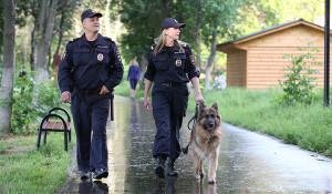 Полиция. Кинологи с собакой.