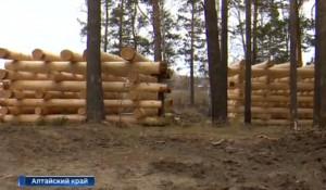 Вырубка леса в поселке Лесном.
