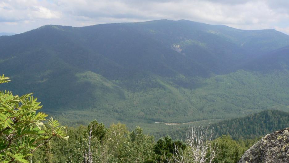 Долина Ини, Тигирекский заповедник.