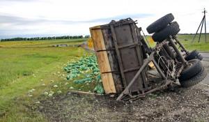 На Алтае перевернулся грузовик с капустой.