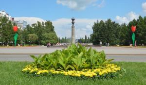 Тюльпаны на площади Советов