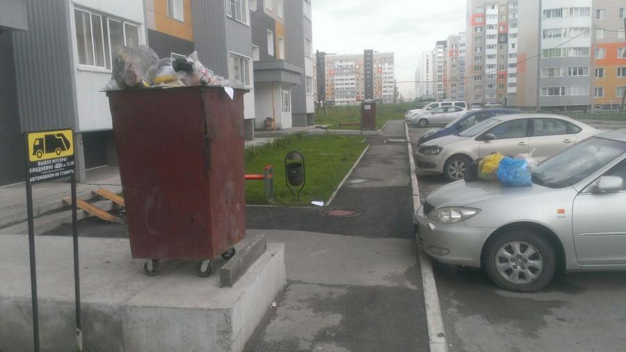 Автомобили, закиданные мусором.