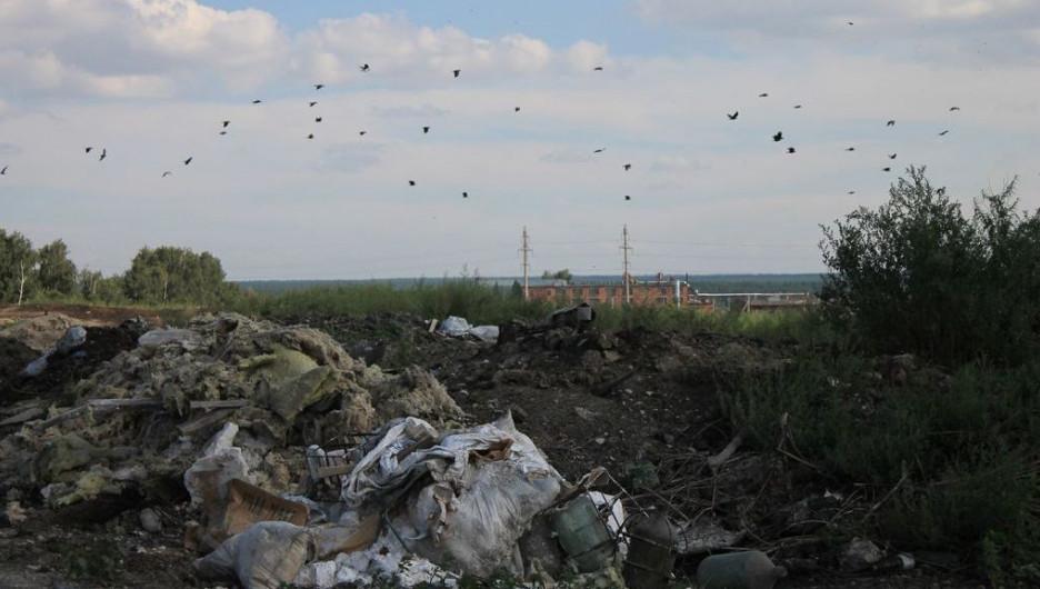 Жители села Черемное жалуются на ужасный запах от отходов.