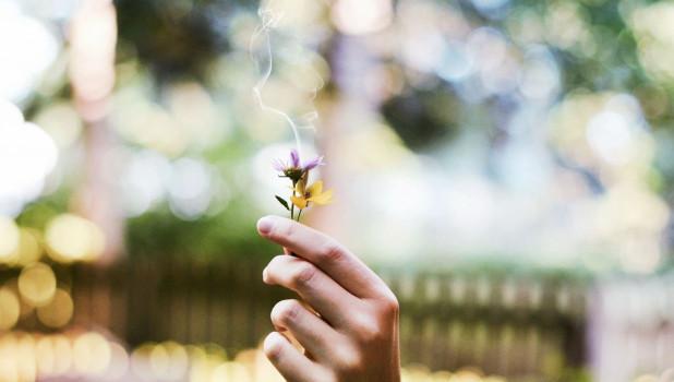 Нет курению.