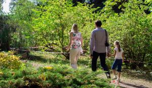 Семья. Природа. Парк