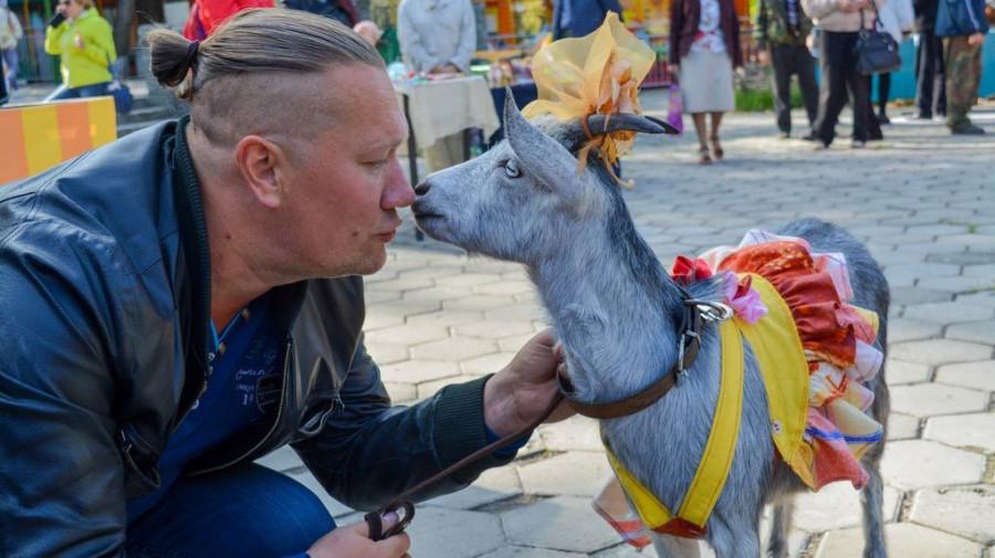 Праздник козьего молока в Барнауле.