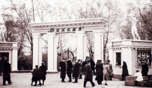 Стадион Динамо. 1956 год.