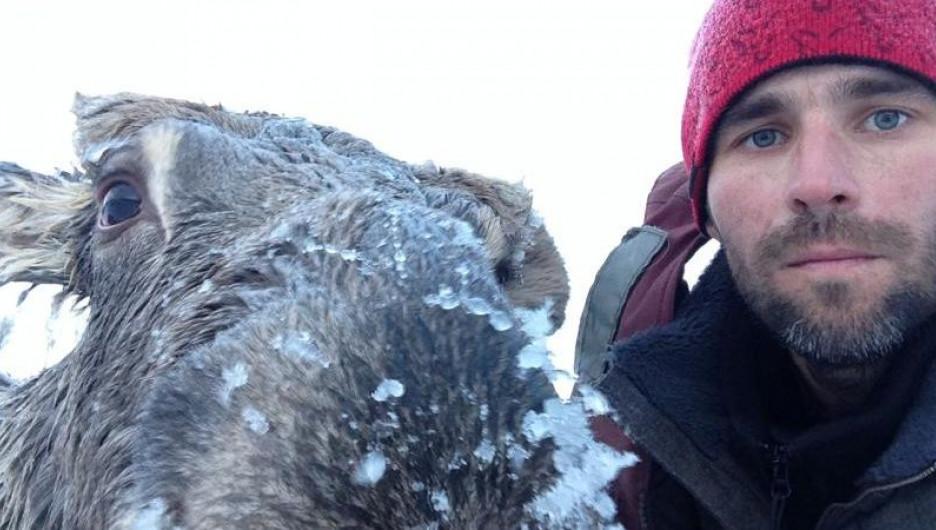 Алтайский рыбак спас тонувшего лося.