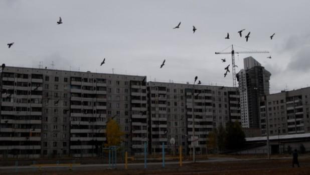 В Барнауле ожидается похолодание.