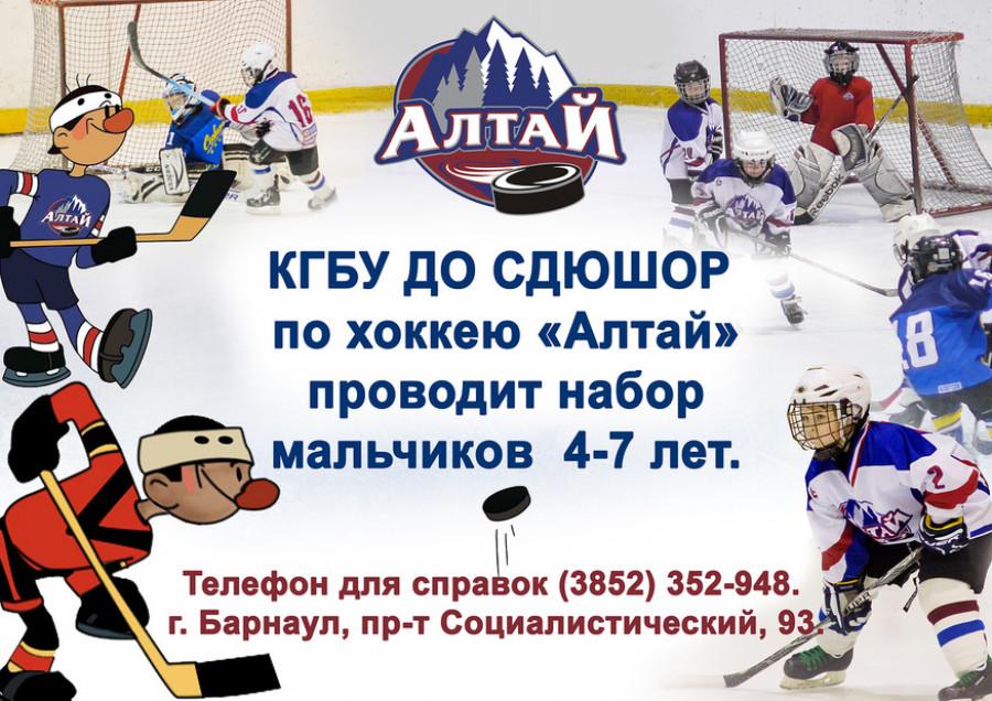 Играем в хоккей.