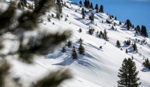 Зима. Снег в горах. Горные лыжи.