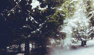 Зима. Снегопад.