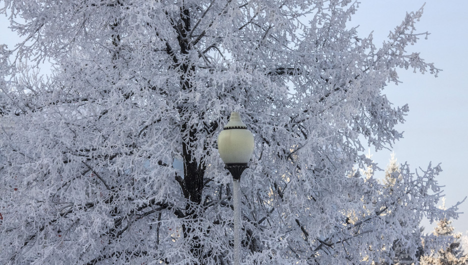 Морозы. Снег. Зима.